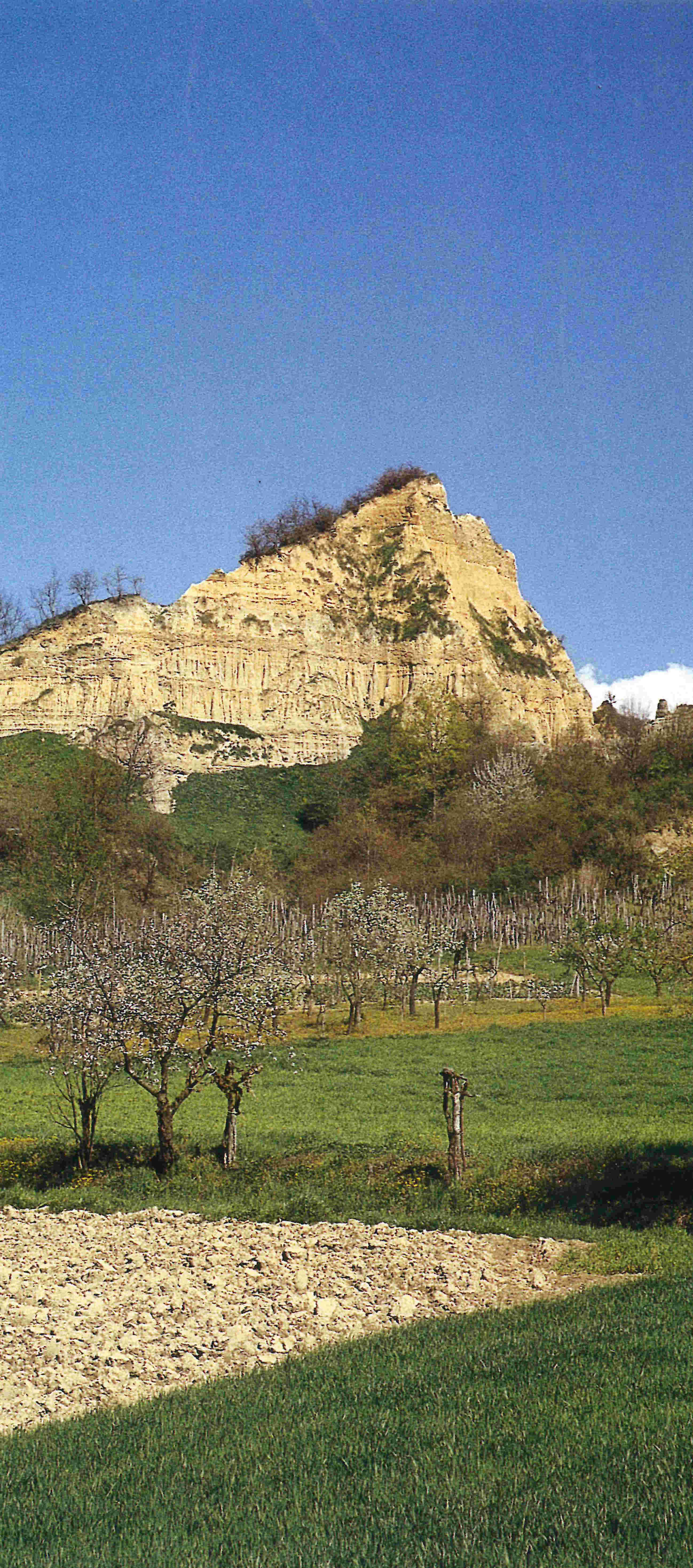 REGGELLO FORESTA DI SANT'ANTONIO